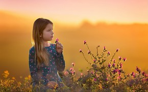 Picture flowers, nature, girl
