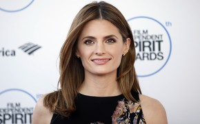 Picture look, smile, actress, hairstyle, photoshoot, smile, hair, look, Stana Katic, Stana Katic, actress, hairstyle