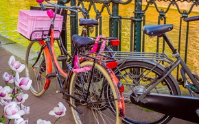 Picture bike, river, spring, Amsterdam, bicycle, flowering, bike, blossom, Amsterdam, flowers, old, spring, buildings, Netherlands, canal