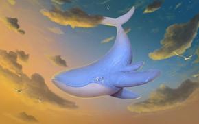 Picture clouds, art, kit, Flying Whale, Mattia Lari