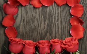 Picture bouquet, petals, red, wood, romantic, roses, red roses
