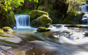 Picture Nature, Stream, River, Forest, Stones