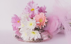 Picture flowers, background, bouquet, colorful, chrysanthemum, bokeh, tulle