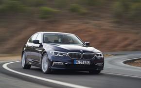 Picture road, asphalt, movement, markup, speed, blur, turn, BMW, sedan, xDrive, 530d, Luxury Line, 5, dark …