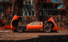 Picture Color, Auto, Lamborghini, Dust, Machine, Orange, 1971, Car, Car, Supercar, Old, Lamborghini Miura, P400, Jeremy …