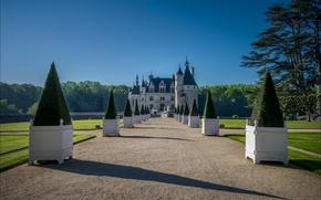 Picture castle, France, alley, Chenonceau