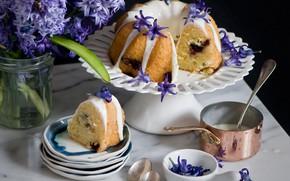 Picture glaze, cupcake, hyacinth