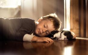 Picture sleep, boy, kitty
