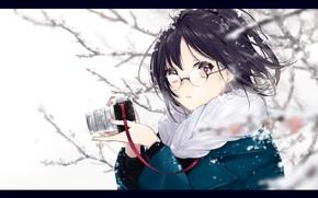 Picture girl, snow, surprise, anime, art, glasses, the camera, sogawa