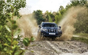 Picture squirt, vegetation, dirt, SUV, Toyota, 4x4, Land Cruiser, the five-door