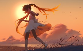 Picture the sky, girl, clouds, sunset, birds, anime, art, vocaloid, hatsuny miku