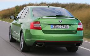 Picture road, grass, green, sedan, roadside, rear view, shrub, Skoda, 2013, Skoda, Octavia RS