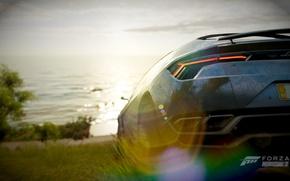 Picture machine, auto, grass, trees, the ocean, rocks, shore, view, Jaguar, jaguar, games, horizon, forza