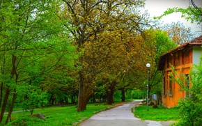 Picture Greens, Spring, Trees, Park, Track, Green, Park, Spring, Trees, Path