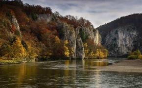 Picture autumn, forest, trees, river, rocks, Germany, Bayern, Kelheim
