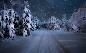 Wallpaper winter, road, forest, the sky, snow, trees, snowflakes, night, the snow