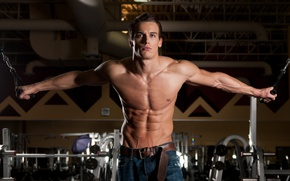 Picture look, pose, jeans, fitness, muscle, muscle, press, athlete, simulators, gym, fitness, gym, bodybuilder, training, abs, …