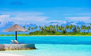 Picture sea, the sky, the sun, clouds, tropics, palm trees, coast, sunbeds