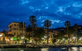 Wallpaper promenade, home, Italy, night, Santa Margherita Ligure, palm trees, lights