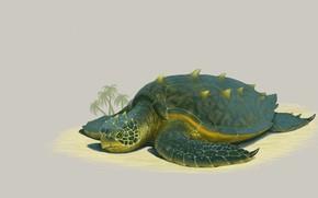 Picture beach, turtle, art, Illustrator, Grand Sea Turtle, Justen Moore