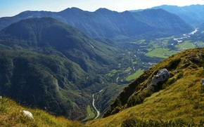 Picture trees, mountains, river, field, height, valley, Sunny, the view from the top, Slovenia, Bovec