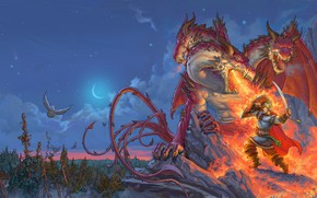 Picture forest, night, weapons, fire, flame, owl, the moon, armor, battle, hero, Dragon, Dobrynya