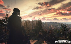 Wallpaper game, the game, games, pubg, playerunknowns