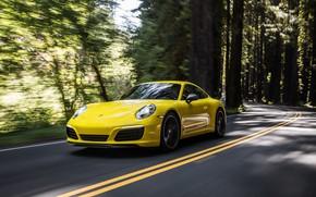 Picture speed, 911, Porsche, Coupe, 2019, Carrera T