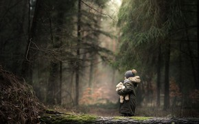 Picture forest, toy, child