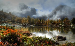 Picture forest, trees, mountains, fog, lake, stones, Switzerland, the bushes, Wallis, Massersee