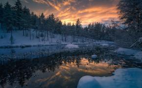 Wallpaper sunset, forest, river, Norway, Ringerike, RINGERIKE, Norway, trees, winter, snow