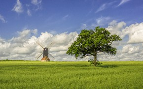 Picture field, tree, England, windmill, Stevington, Bedfordshire