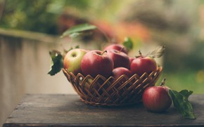 Picture apples, fruit, Freshly picked apples