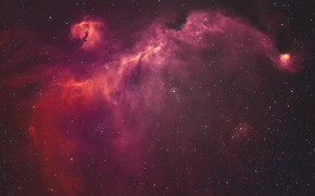Picture space, stars, Seagull Nebula