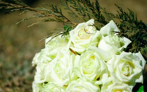 Picture the bride's bouquet, ring-ring, wedding-wedding