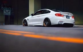 Picture BMW, white, F82, BMW M4, Versus DTLA