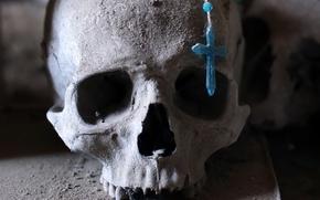 Wallpaper skull, background, macro