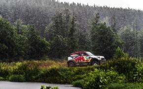 Wallpaper Mini, Cooper, Forest, Sport, Rain, Race, Mini Cooper, Russia, Rally, Rally, Sport, The shower, Mini, ...