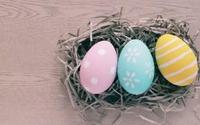 Picture eggs, spring, colorful, Easter, hay, spring, Easter, eggs, decoration, Happy, tender