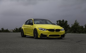 Picture BMW, Clouds, Green, Black, Yellow, Asphalt, F81