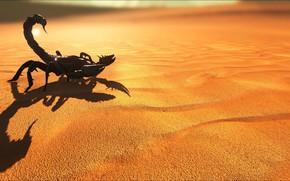 Picture game, scorpion, sand, suna, ARK Survival Evolved
