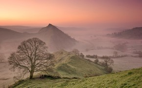 Picture mountains, fog, tree, England, morning, valley