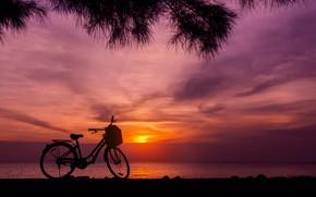 Picture sand, sea, wave, beach, summer, sunset, bike, palm trees, shore, summer, beach, sea, sunset, seascape, …