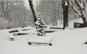 Picture Winter, Trees, Snow, Park, Frost, Winter, Frost, Park, Snow, Benches, The snow