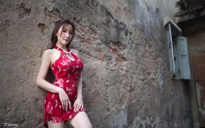 Wallpaper girl, woman, asian, cute