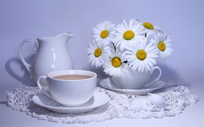 Picture coffee, chamomile, pitcher, camomiles, bouquets