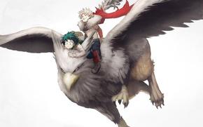 Picture anime, wings, hero, manga, powerful, strong, yuusha, Griffin, mythological animal, Boku no Hero Academy, My …