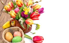 Wallpaper flowers, eggs, spring, colorful, Easter, tulips, Verba, flowers, tulips, daffodils, spring, Easter, painted, eggs, holiday, ...