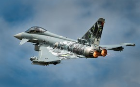 Picture the sky, turbine, flies, Eurofighter Typhoon, combat aircraft