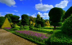 Picture flowers, design, garden, England, trees, the bushes, Levens Hall, Topiary Gardens, greens, the sun, the …